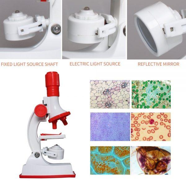 Microscope Enfant Fozela