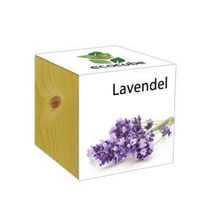 Eco cube Lavande
